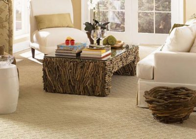 Carpet Flooring by Laguna Kitchen and Bath